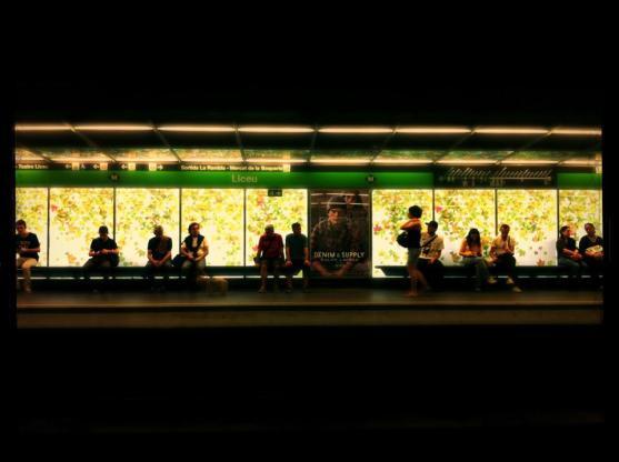 metro liceu